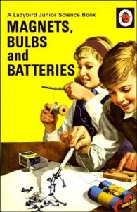 Magnets, Bulbs and Batteries-Ladybird Junior Science