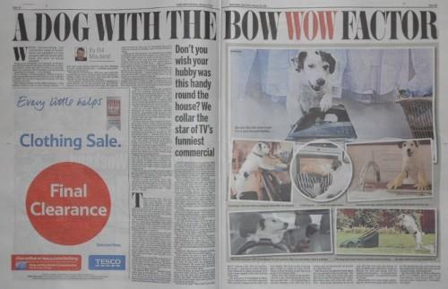 Daily Mail Harvey ad